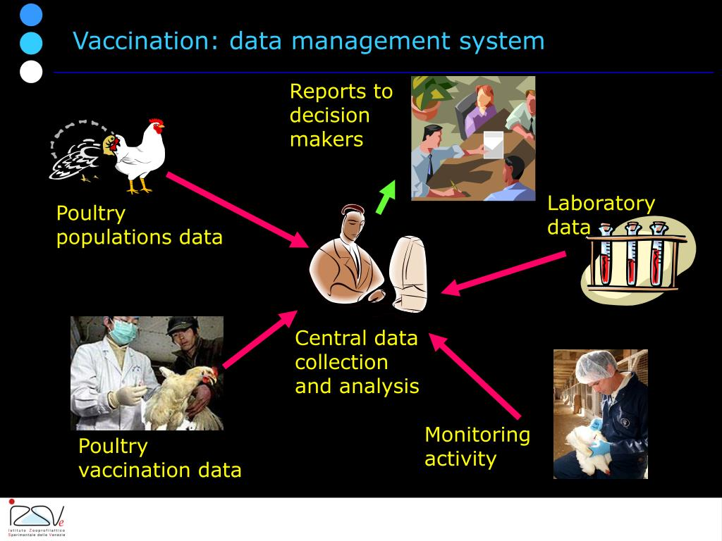 Vaccination: data management system