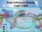 avian influenza spread legal trade