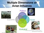 multiple dimensions of avian influenza