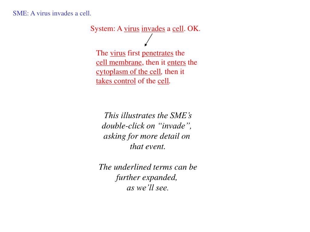 SME: A virus invades a cell.