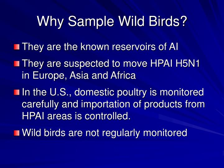 Why sample wild birds