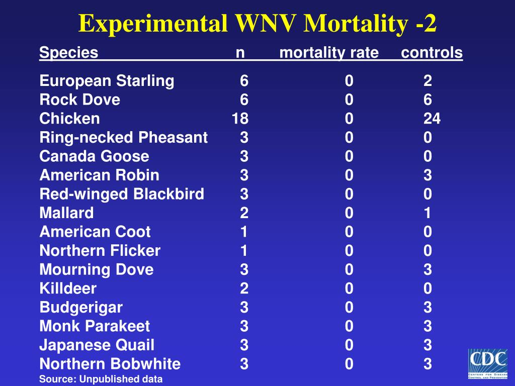 Experimental WNV Mortality -2