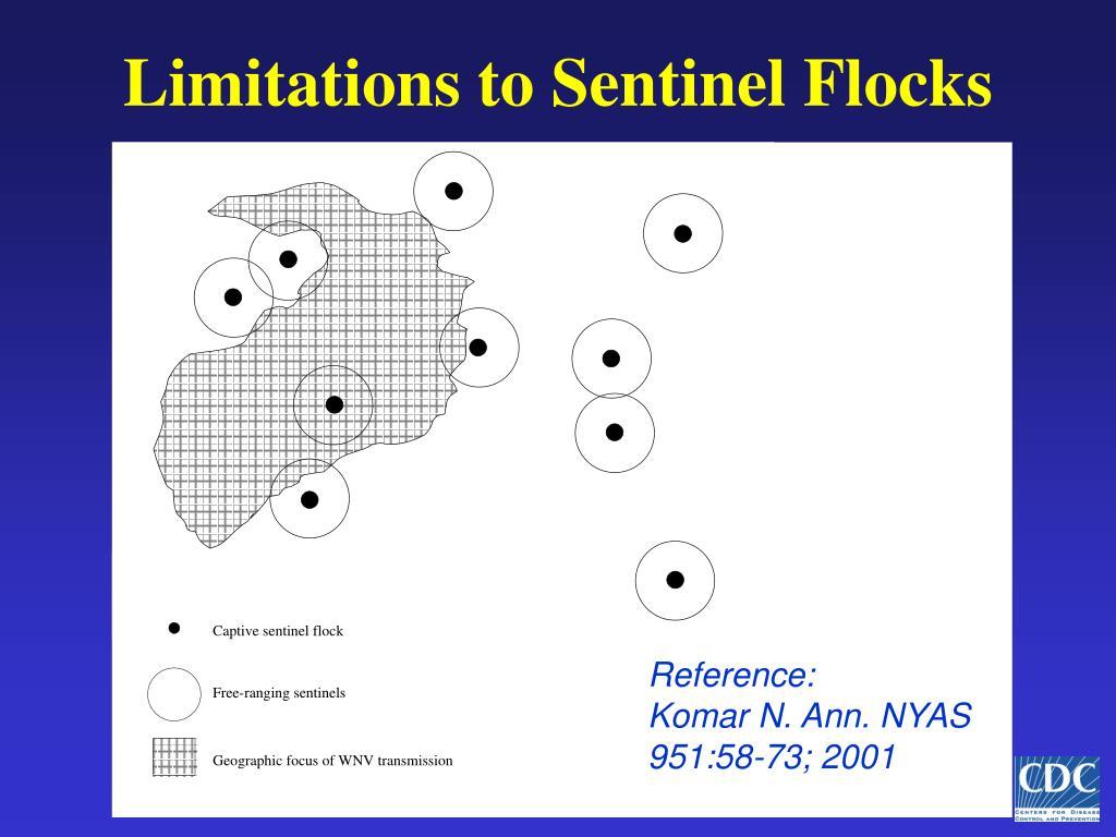 Limitations to Sentinel Flocks