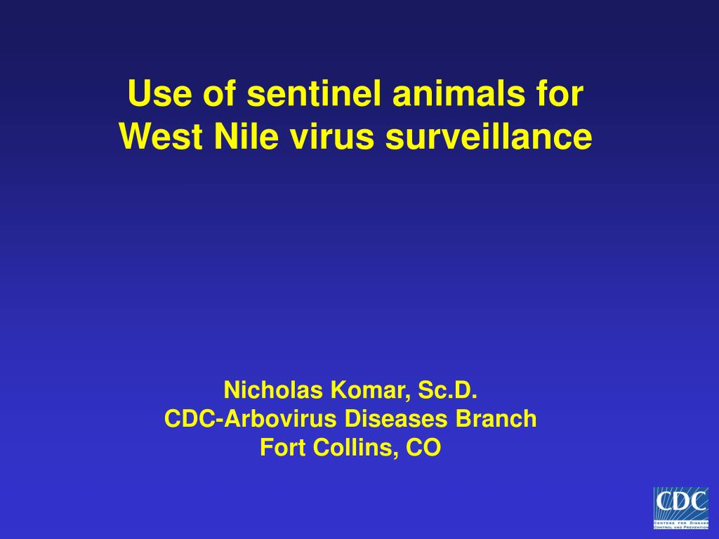 use of sentinel animals for west nile virus surveillance l.