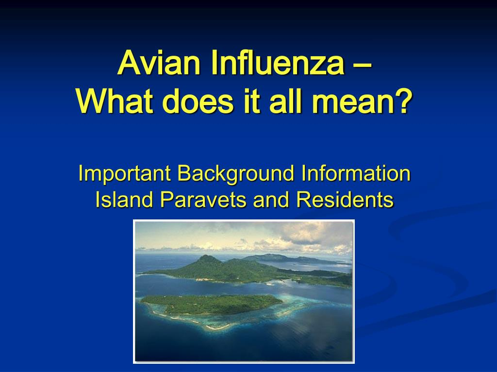 avian influenza what does it all mean l.