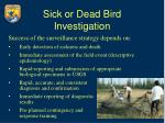 sick or dead bird investigation10