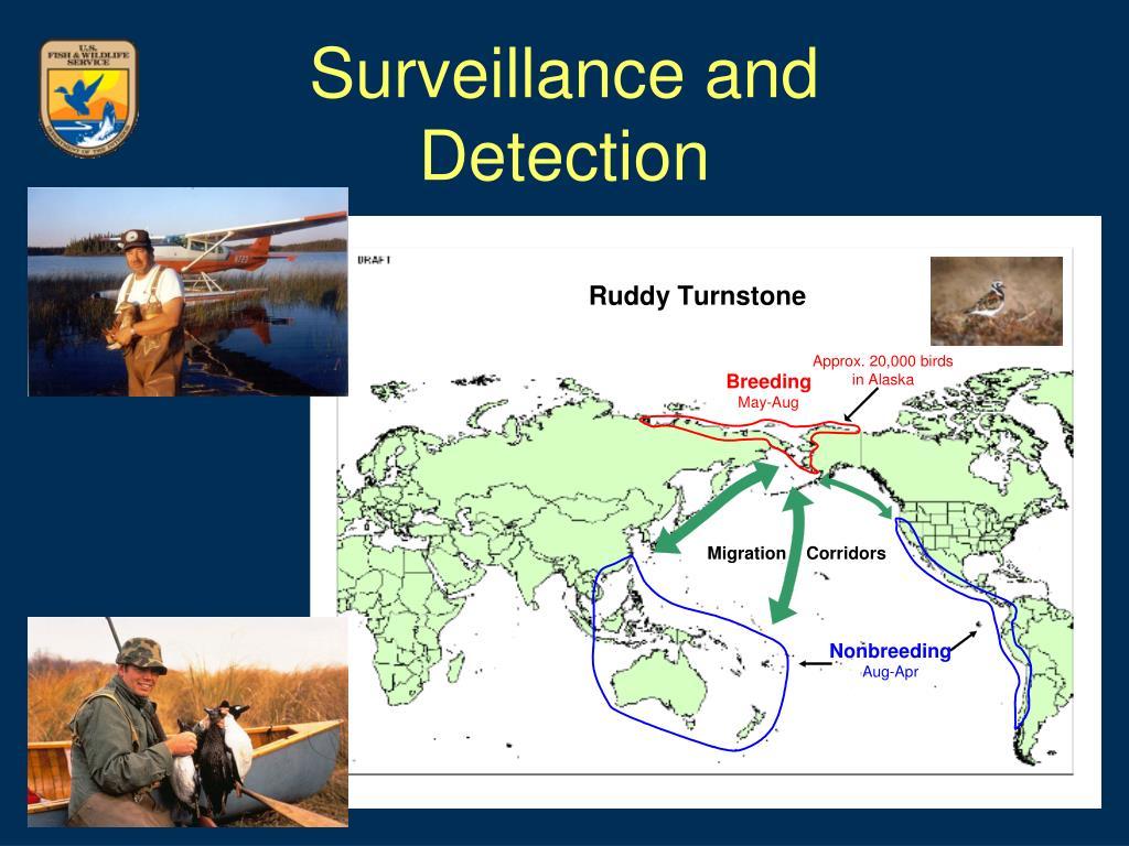 Surveillance and