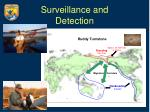 surveillance and detection