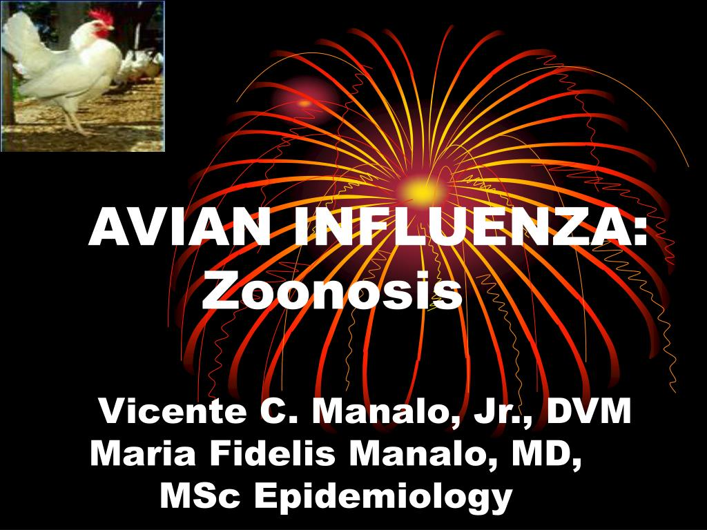 avian influenza zoonosis l.
