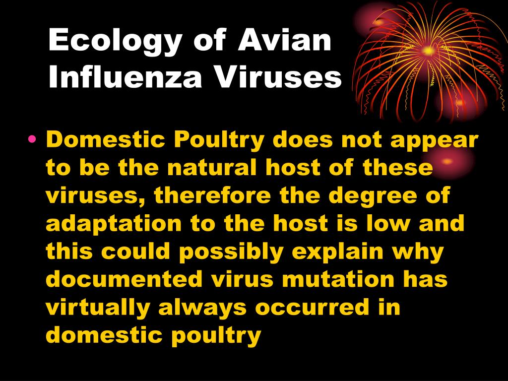 Ecology of Avian Influenza Viruses