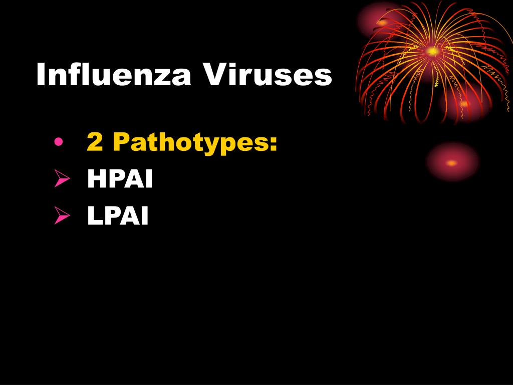 Influenza Viruses