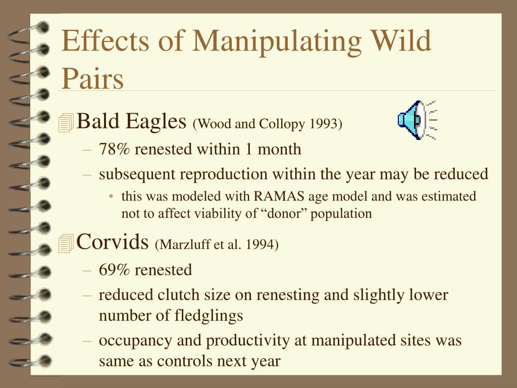 Effects of Manipulating Wild Pairs