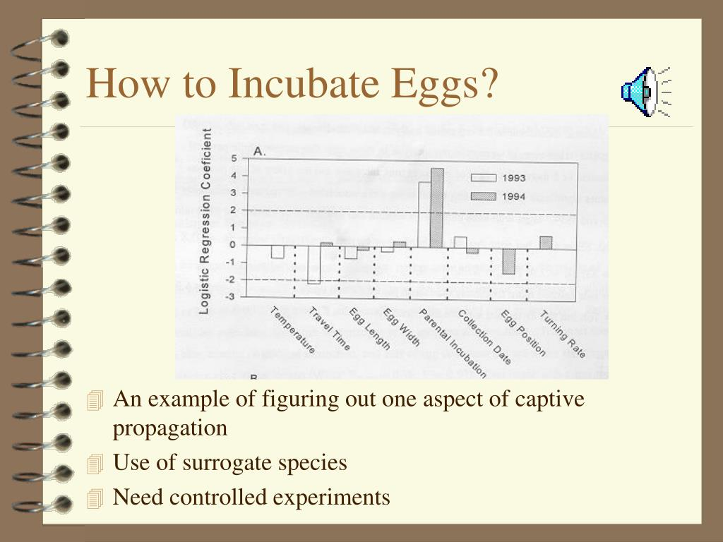 How to Incubate Eggs?