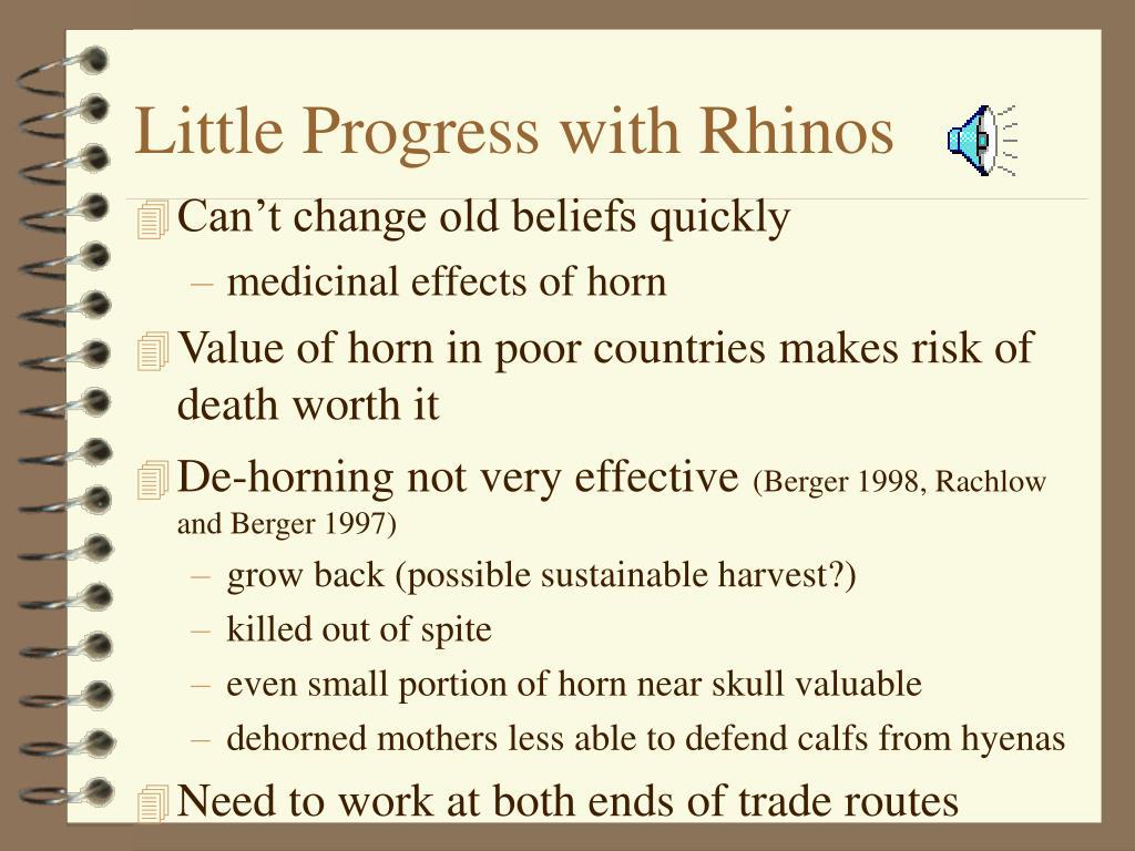 Little Progress with Rhinos