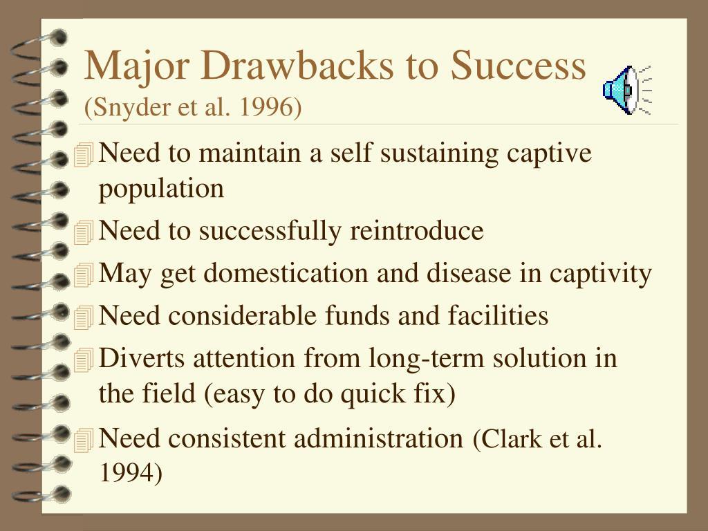 Major Drawbacks to Success