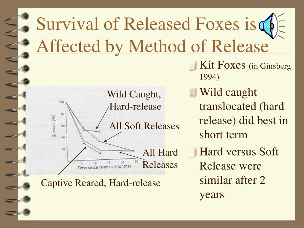 Survival of Released Foxes is Affected by Method of Release