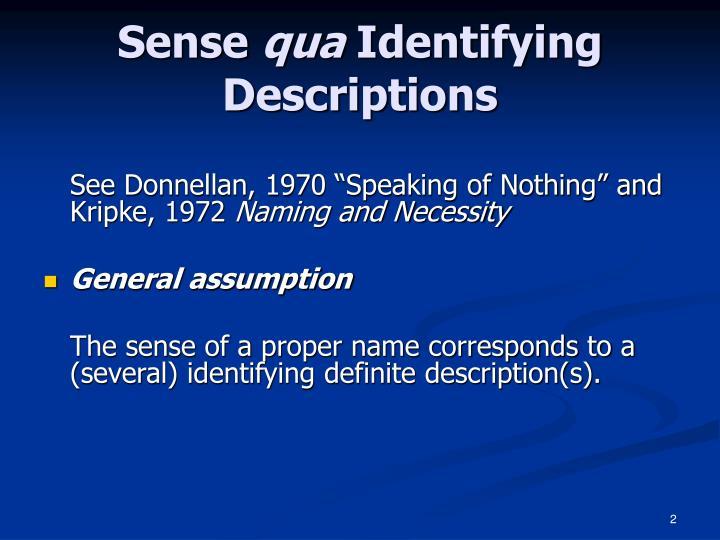 Sense qua identifying descriptions