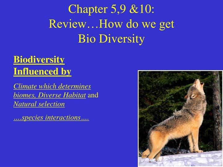 Chapter 5 9 10 review how do we get bio diversity