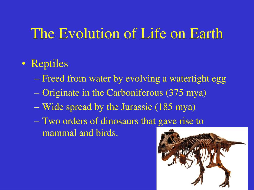 The Evolution of Life on Earth