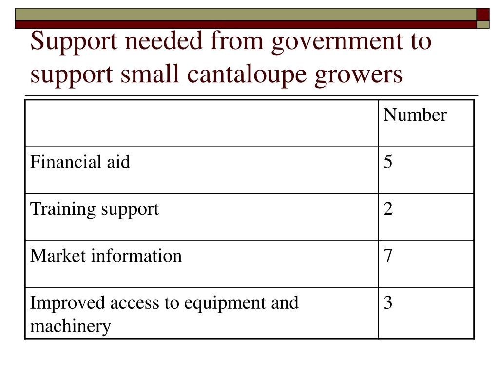 Support needed from government to support small cantaloupe growers
