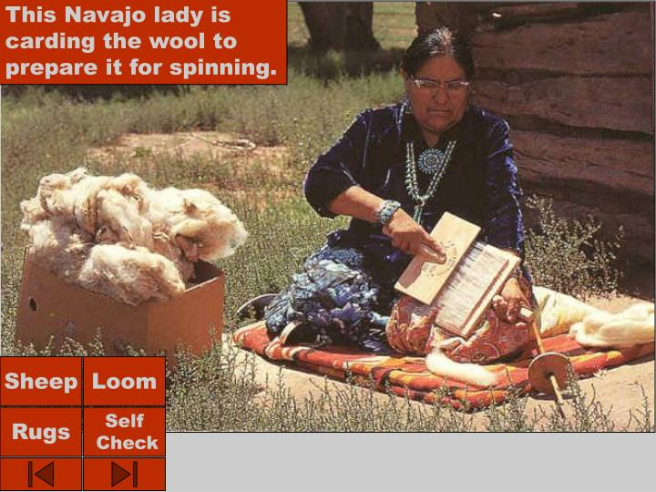 This Navajo lady is carding the wool to prepare it for spinning.
