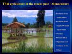 thai agriculture in the recent past monoculture