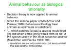 animal behaviour as biological rationality