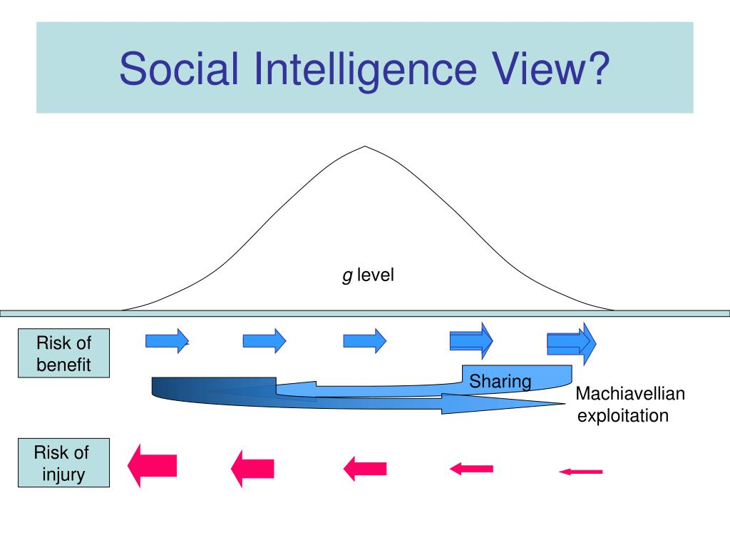 Social Intelligence View?