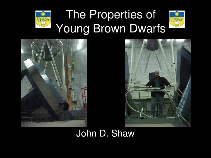 The properties of young brown dwarfs