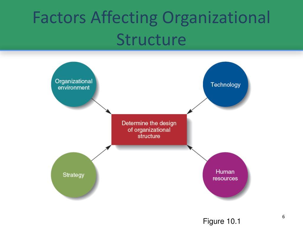 Factors Affecting Organizational Structure