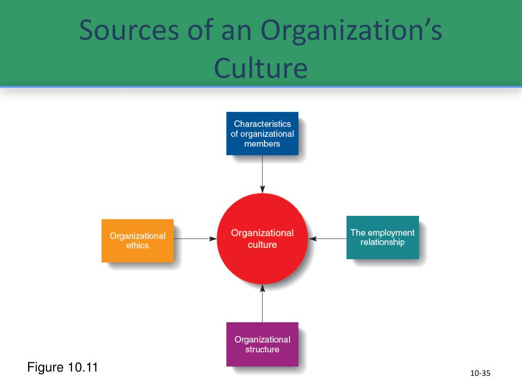 Sources of an Organization's Culture