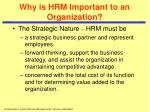 why is hrm important to an organization5