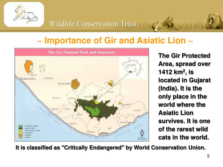 ~ Importance of Gir and Asiatic Lion ~