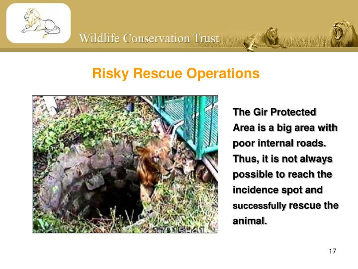 Risky Rescue Operations