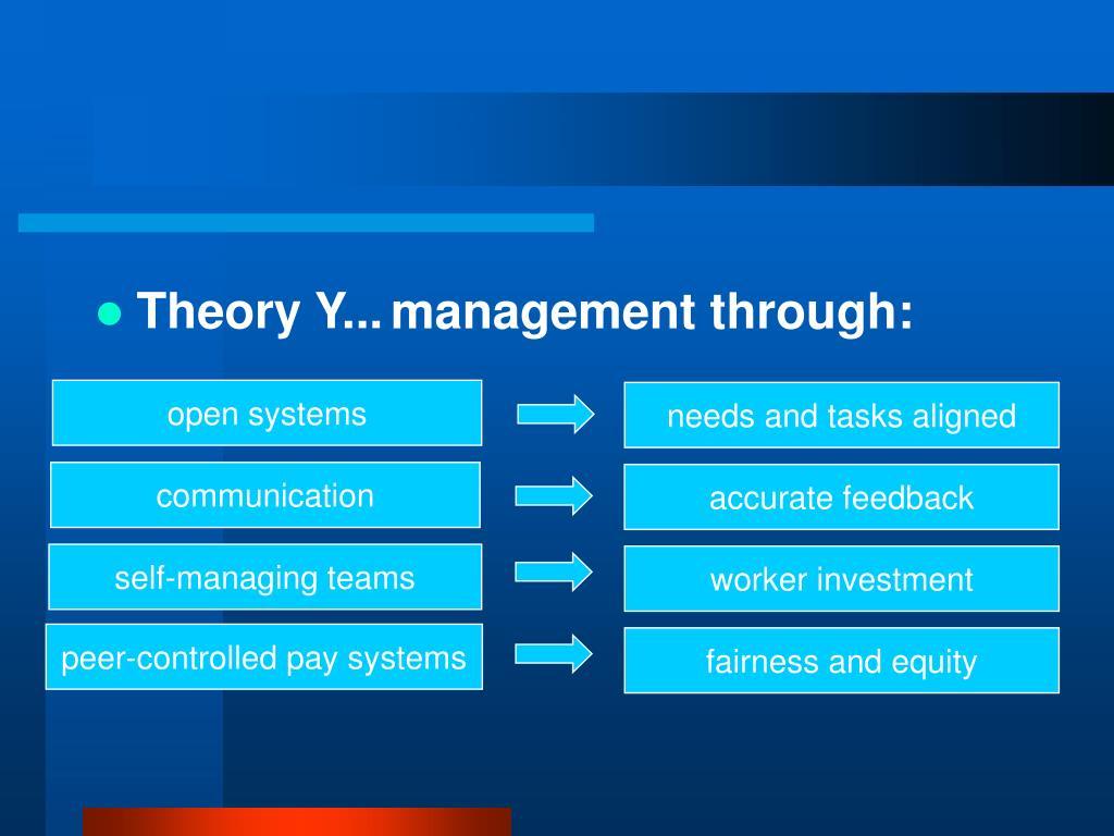Theory Y...