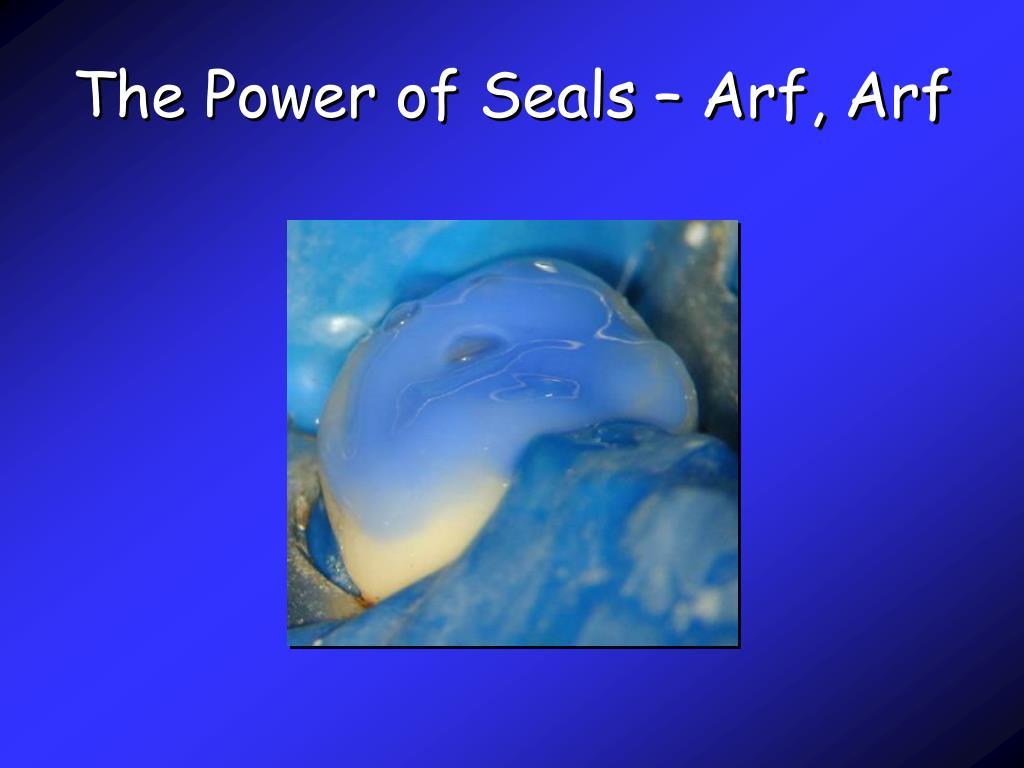 The Power of Seals – Arf, Arf