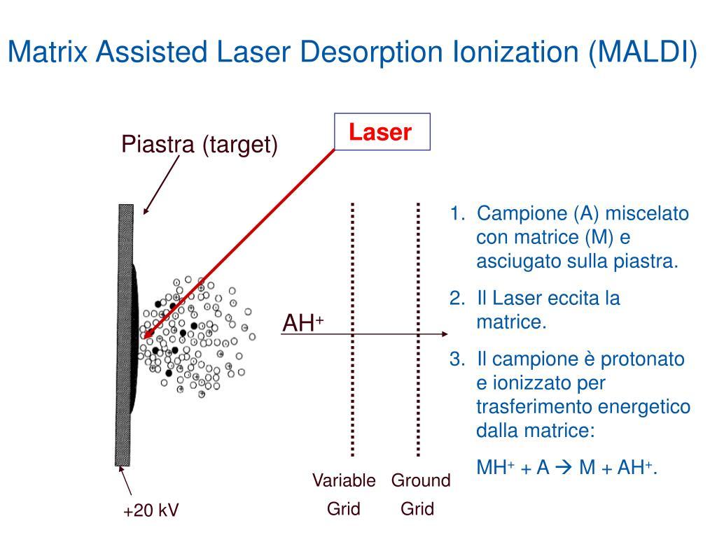 Matrix Assisted Laser Desorption Ionization (MALDI)