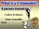 what is a criminalist