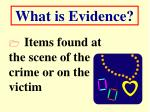 what is evidence13