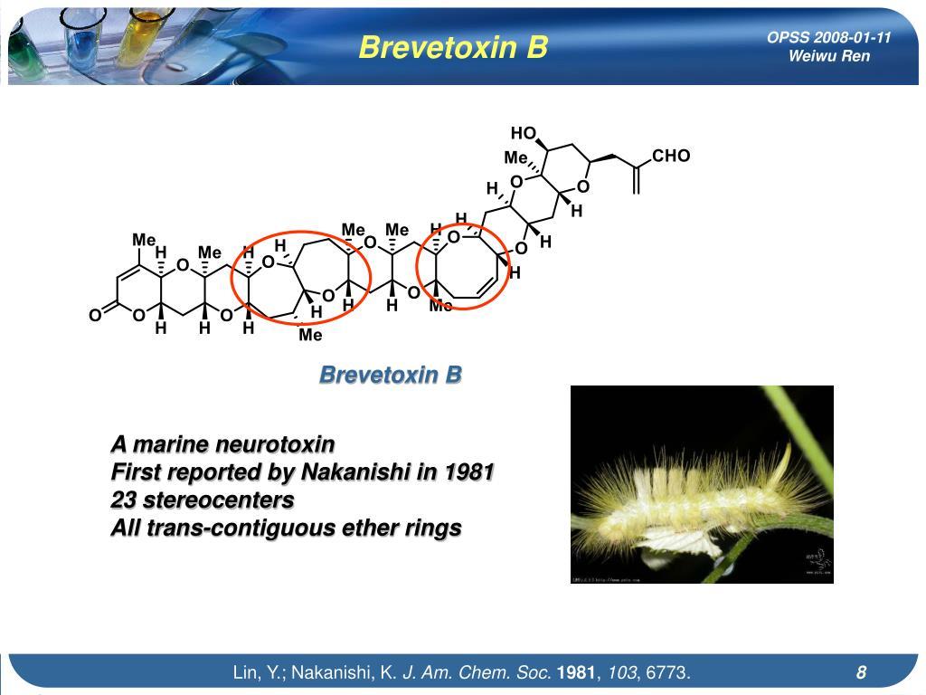 Brevetoxin B