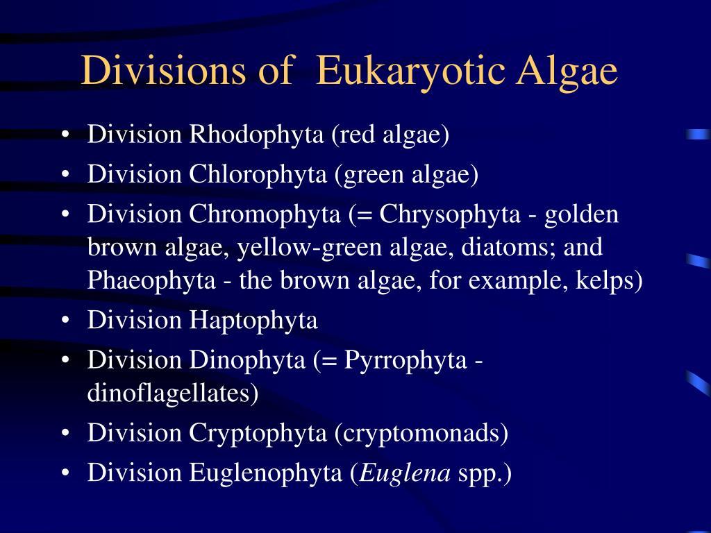 Divisions of  Eukaryotic Algae