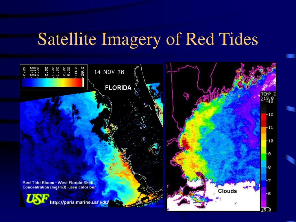 Satellite Imagery of Red Tides