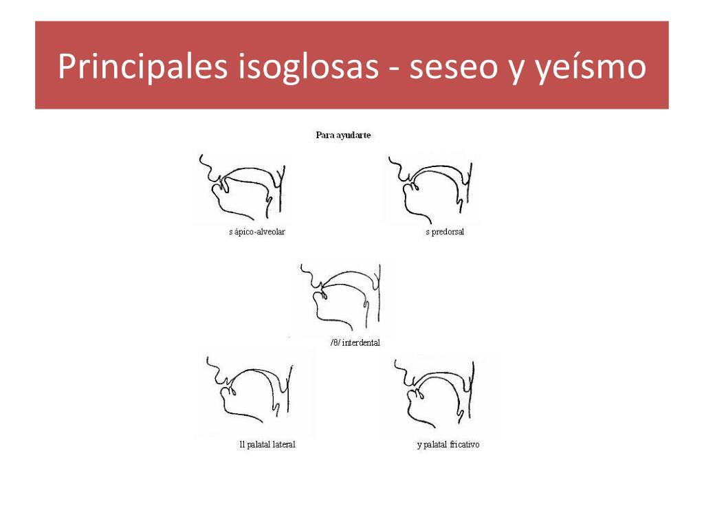 Principales isoglosas - seseo y yeísmo