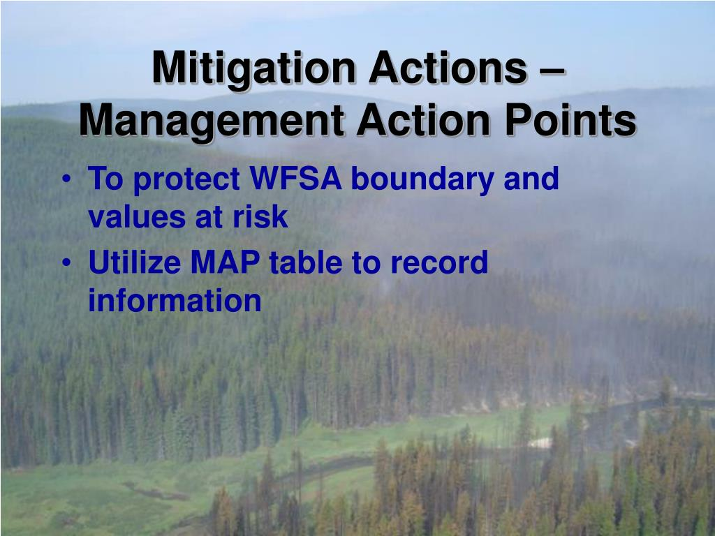 Mitigation Actions – Management Action Points