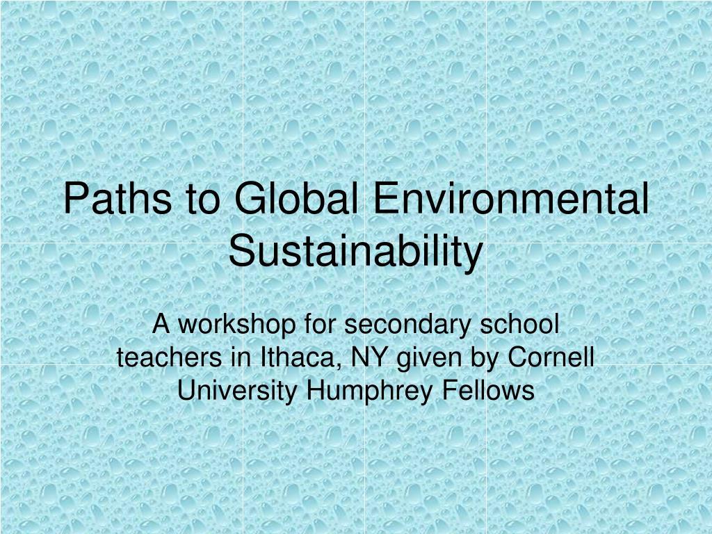 paths to global environmental sustainability l.