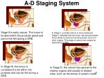 a d staging system