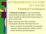 environmental factors in cancer chemical carcinogens