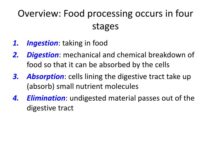 Overview food processing occurs in four stages