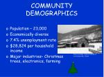 community demographics