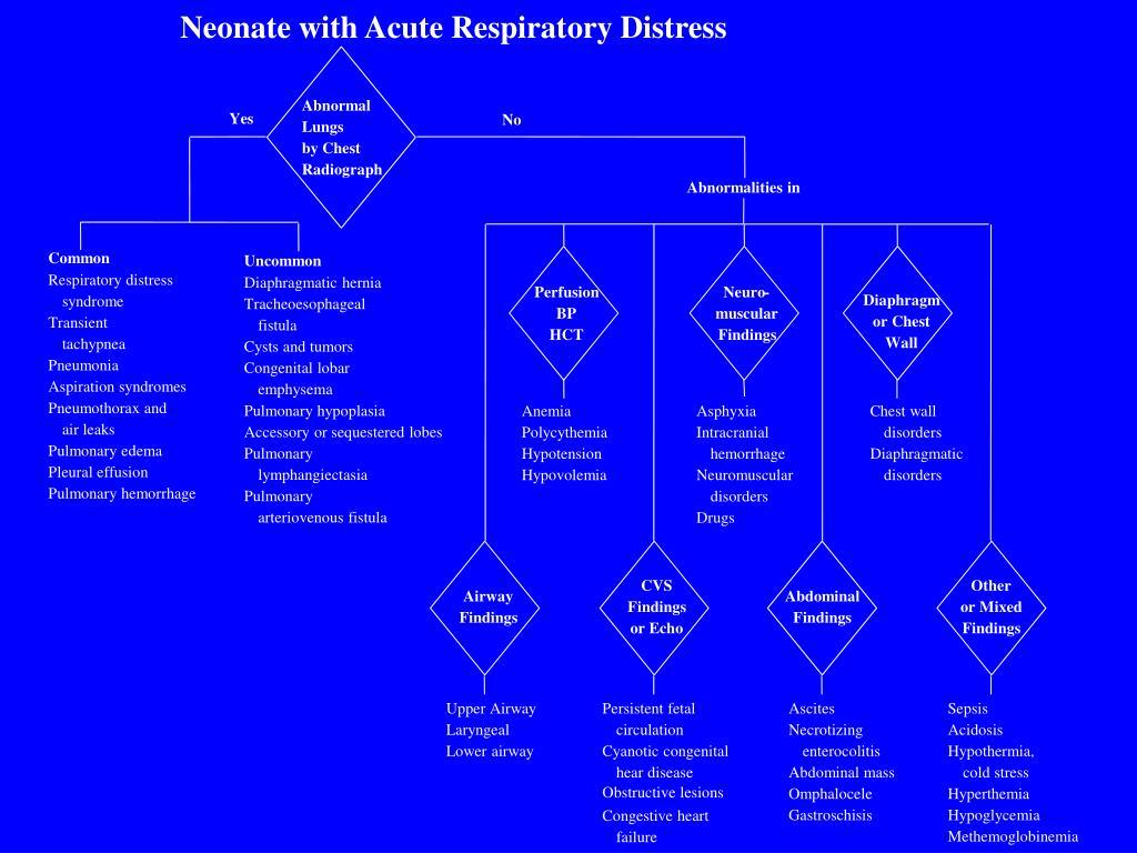 Neonate with Acute Respiratory Distress